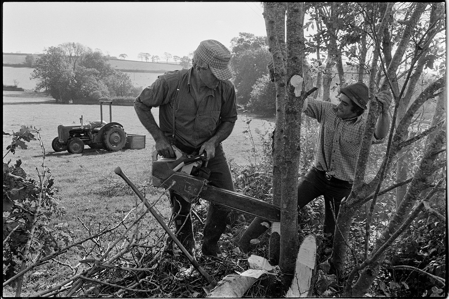 Man using chainsaw when hedgelaying – Alf Pugsley, Stephen Squire, Dolton, Lower Langham, October 1978. Documentary photograph by James Ravilious for the Beaford Archive © Beaford Arts