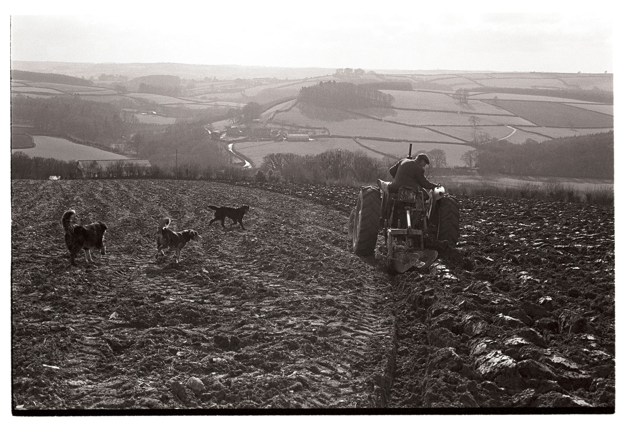 George Ayre ploughing, Ahswell, Dolton, 14 April 1979
