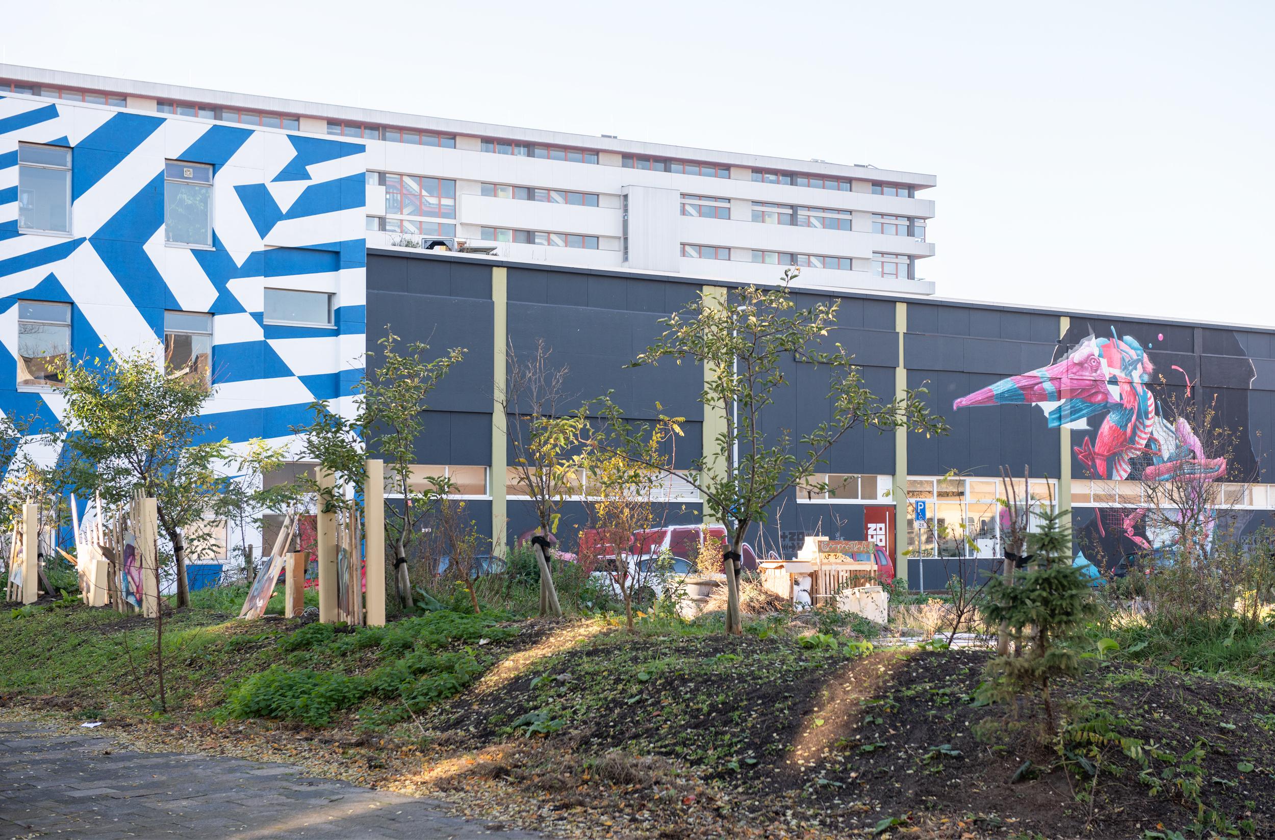 Zomerhofkwartier © Marlies Lageweg (2019)