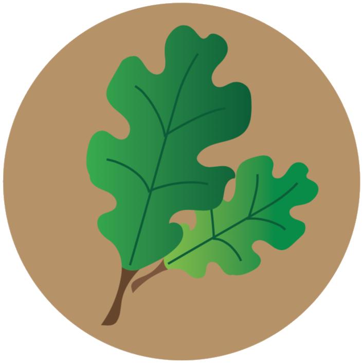 lecanium-scale-icon.png