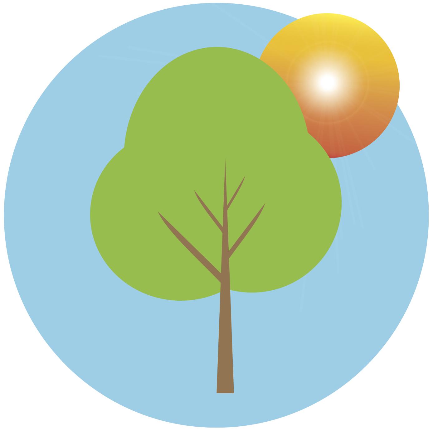 summer-save-a-tree.jpg