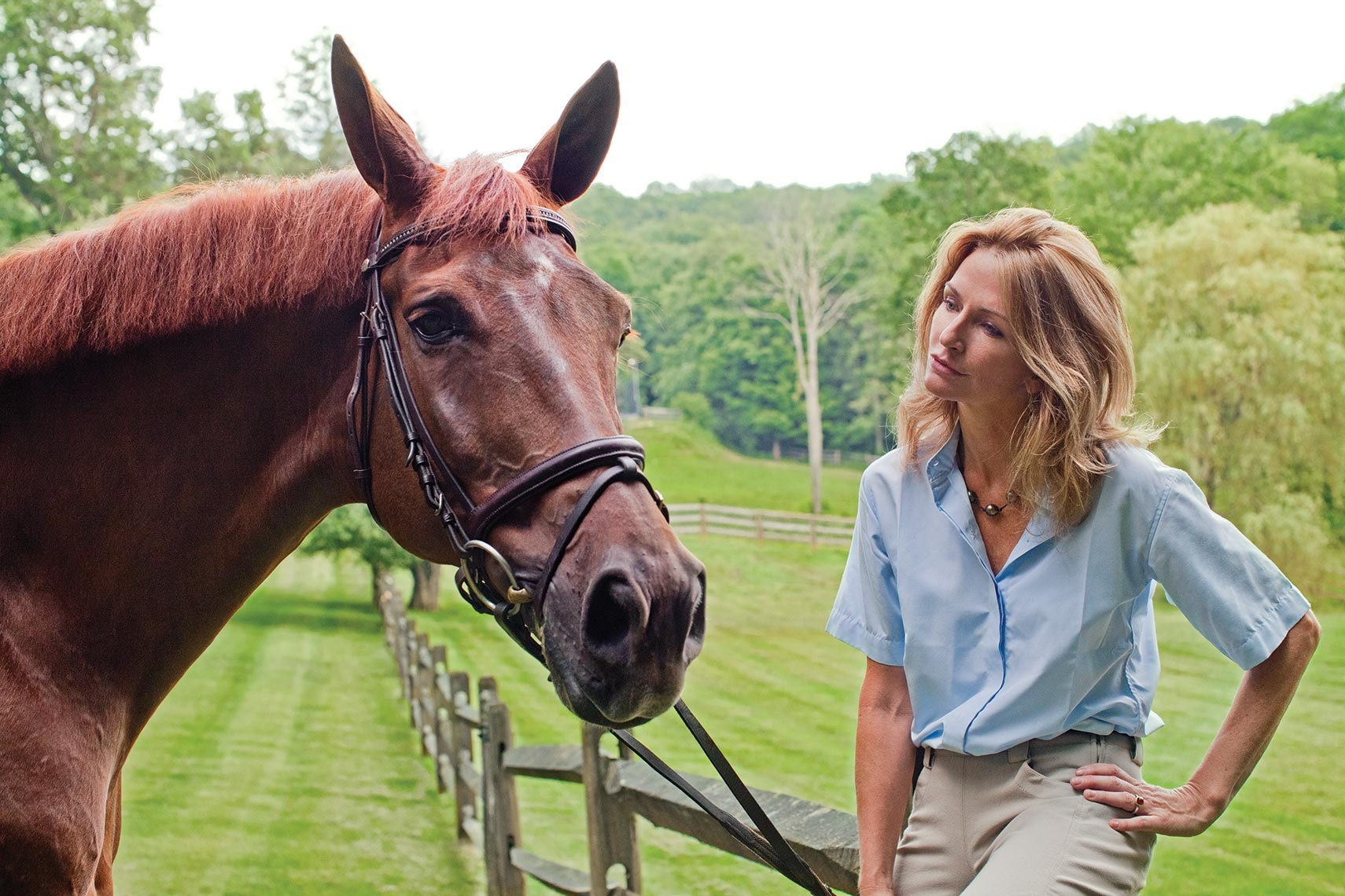 ANNLEARY.HORSE.jpg