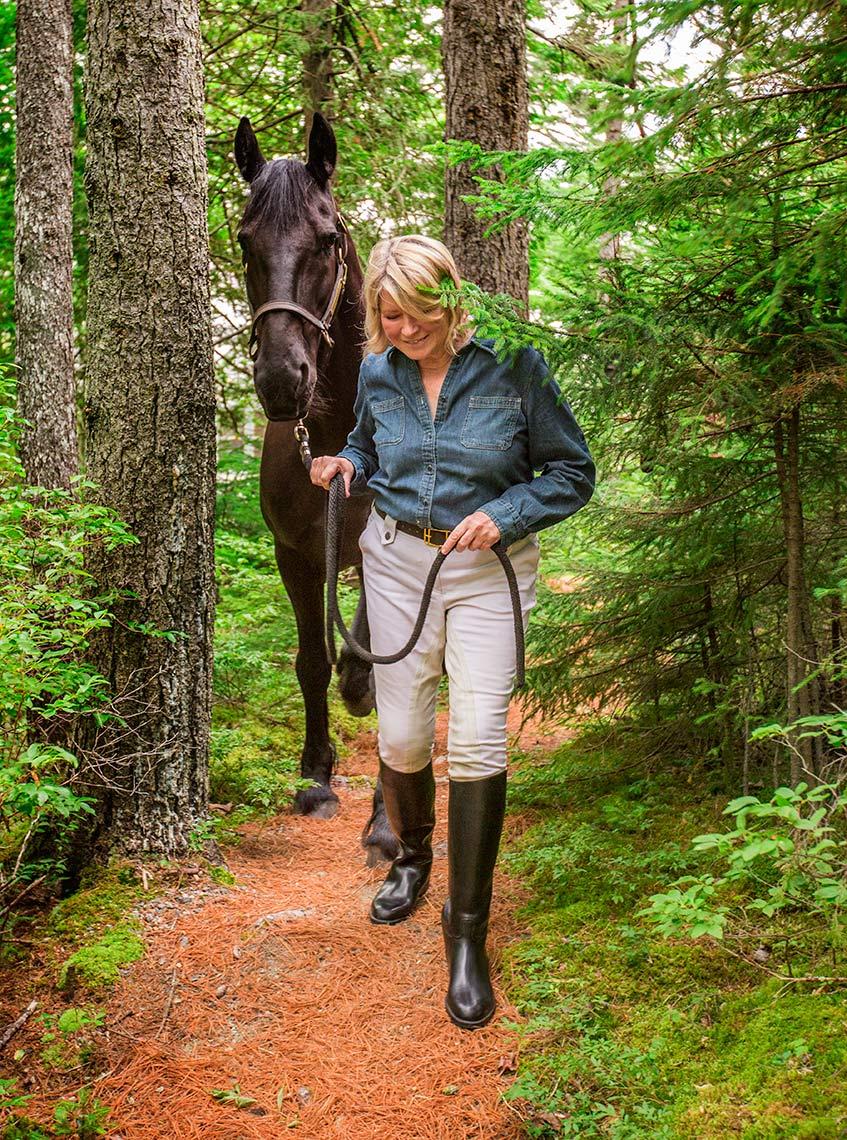 MARTHASTEWART.HORSE.jpg