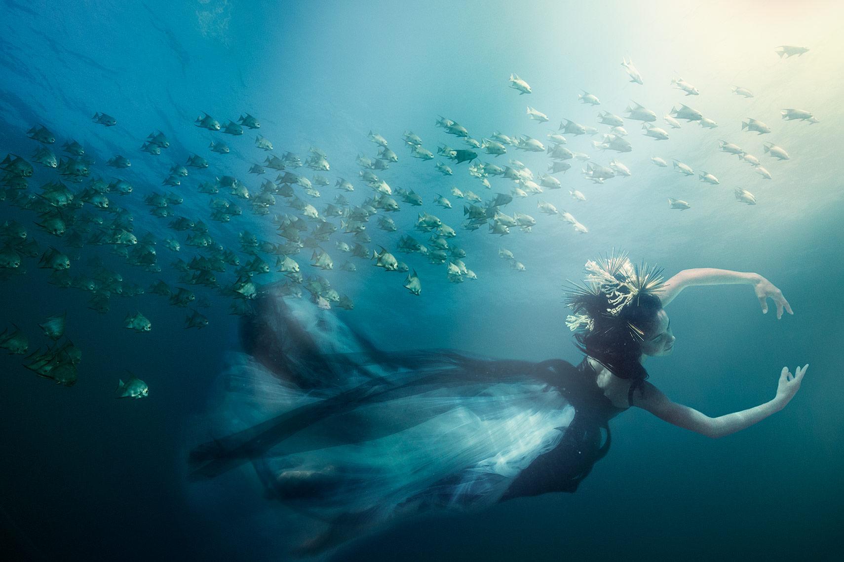 underwater.photography.jpg