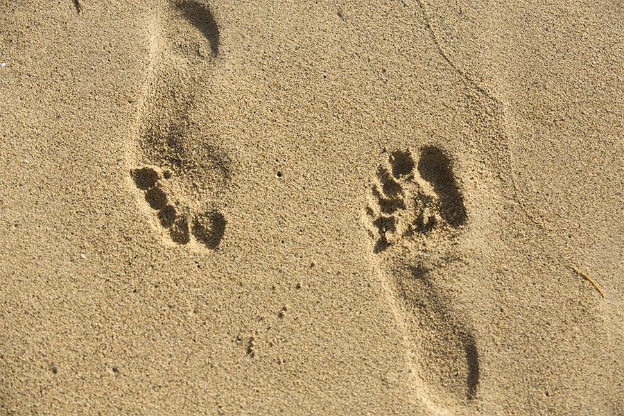 Day2_CooperIsland_Beach_Moorings_1215_r1.jpg