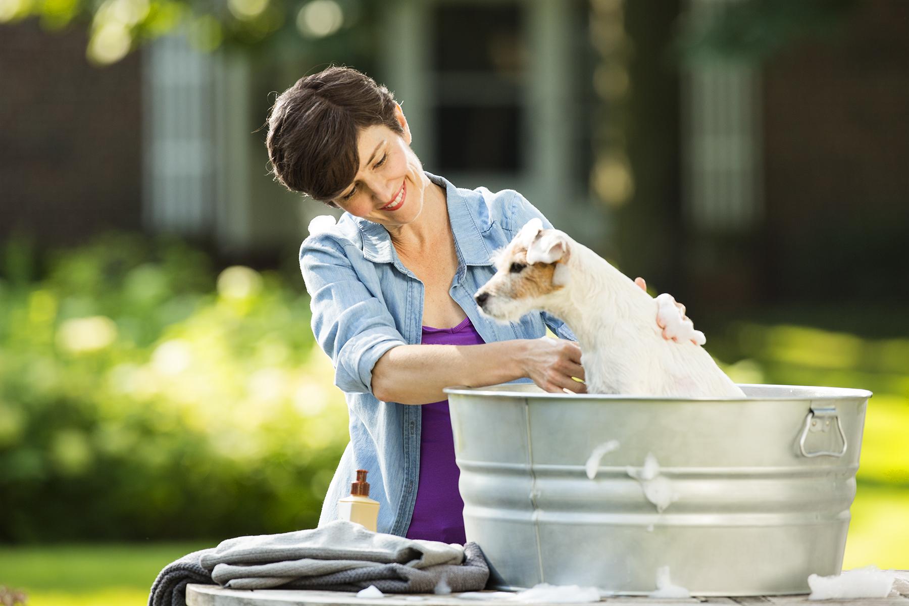 Man-Washing-Dog-143_r1.jpg
