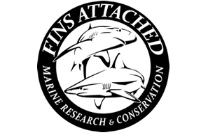 Fins_Attached_logo+(1).jpg