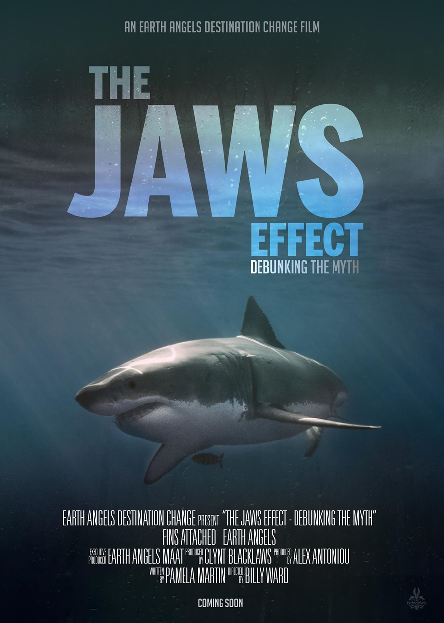 the-jaws-effect.jpg