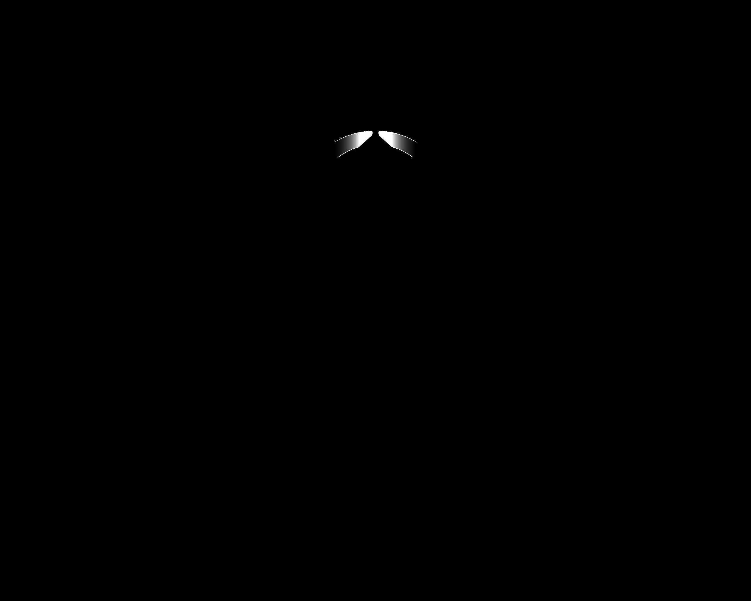 PLC Full Logo-01.png