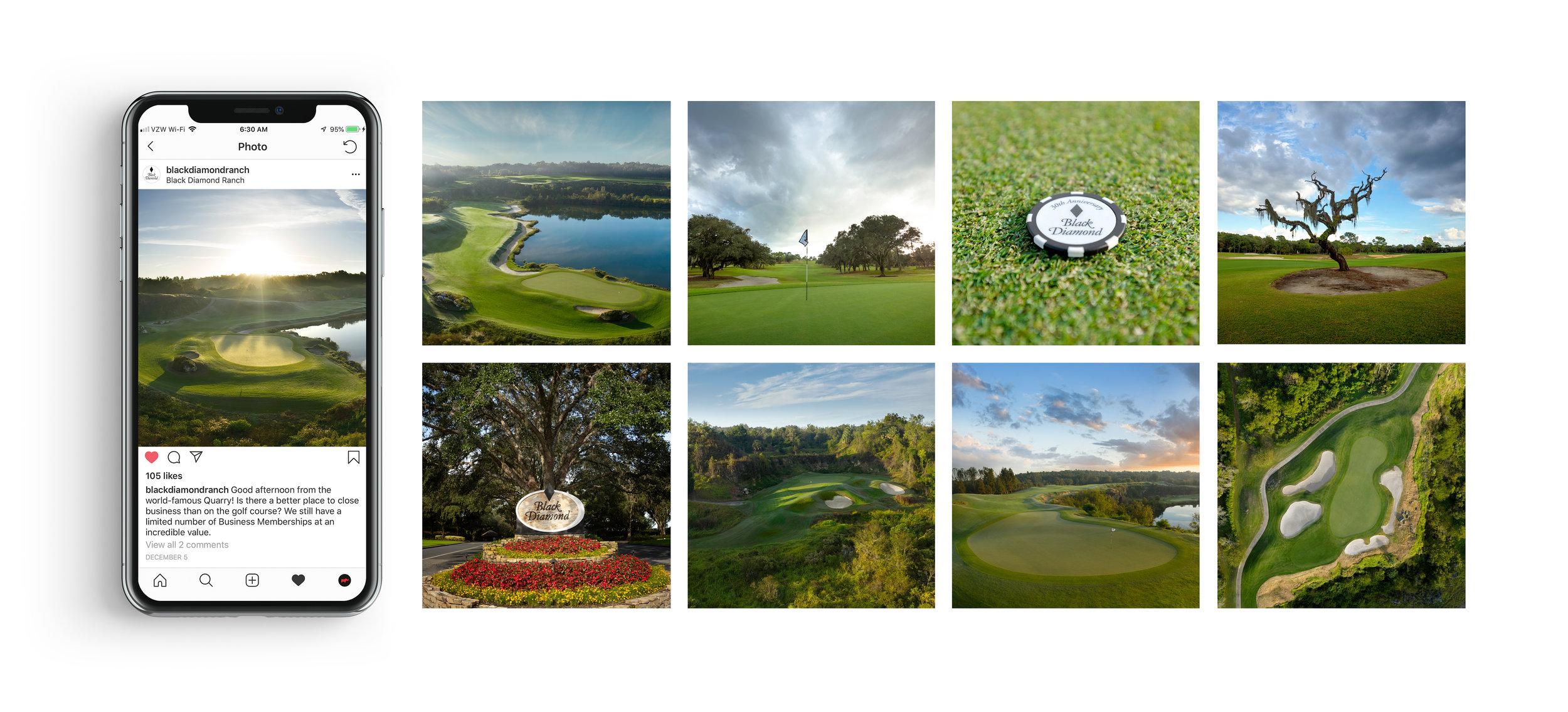 iPhone x vert golf2.jpg