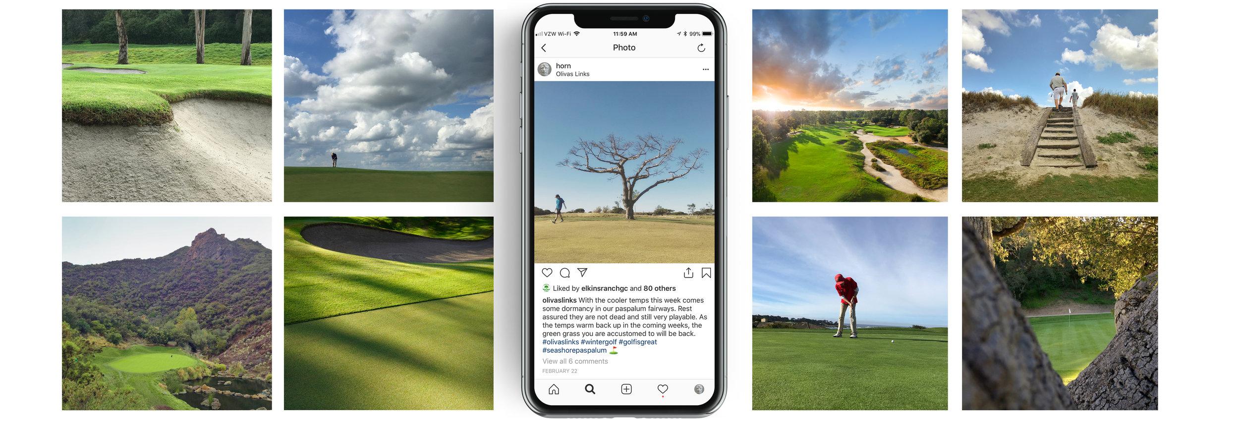 iPhone x vert golf3.jpg