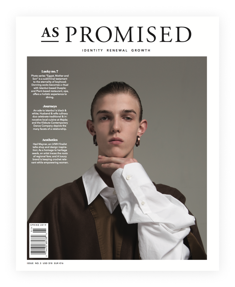 As Promised Issue 3.9.png
