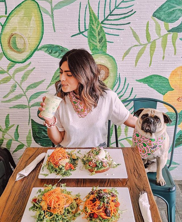 Sunday brunch goals 🥑💫 pc: @honeyidressedthepug