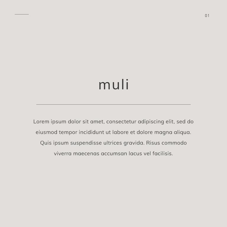 GoogleFontMuli.png