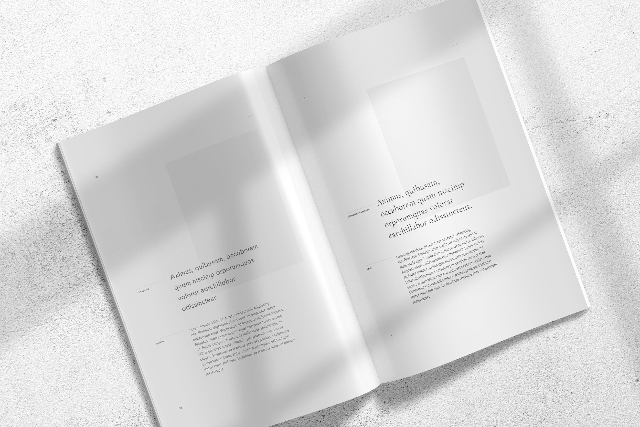Font Catalog Typeface Branding.jpg
