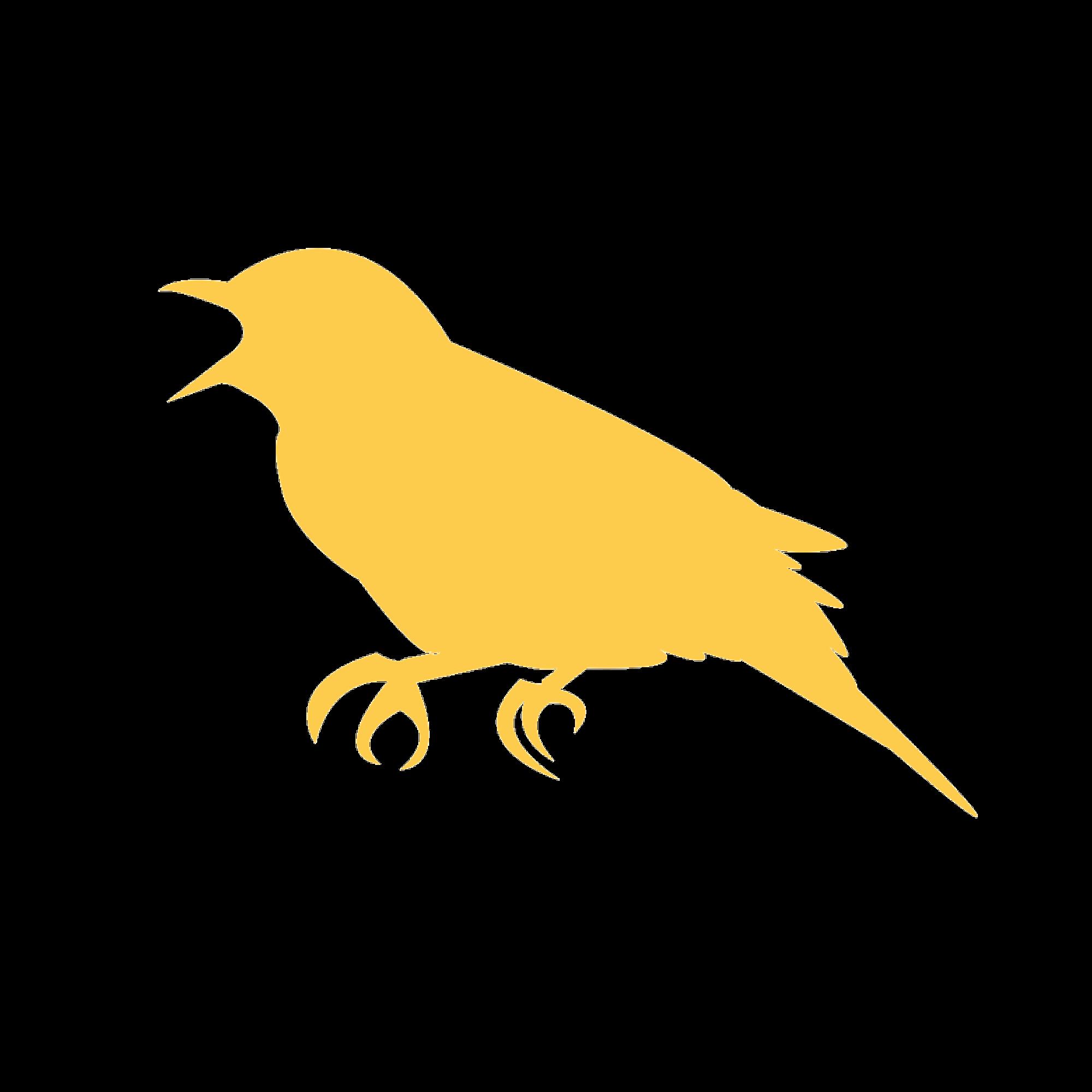 Sweet Songbird - 12 monthsBest Value