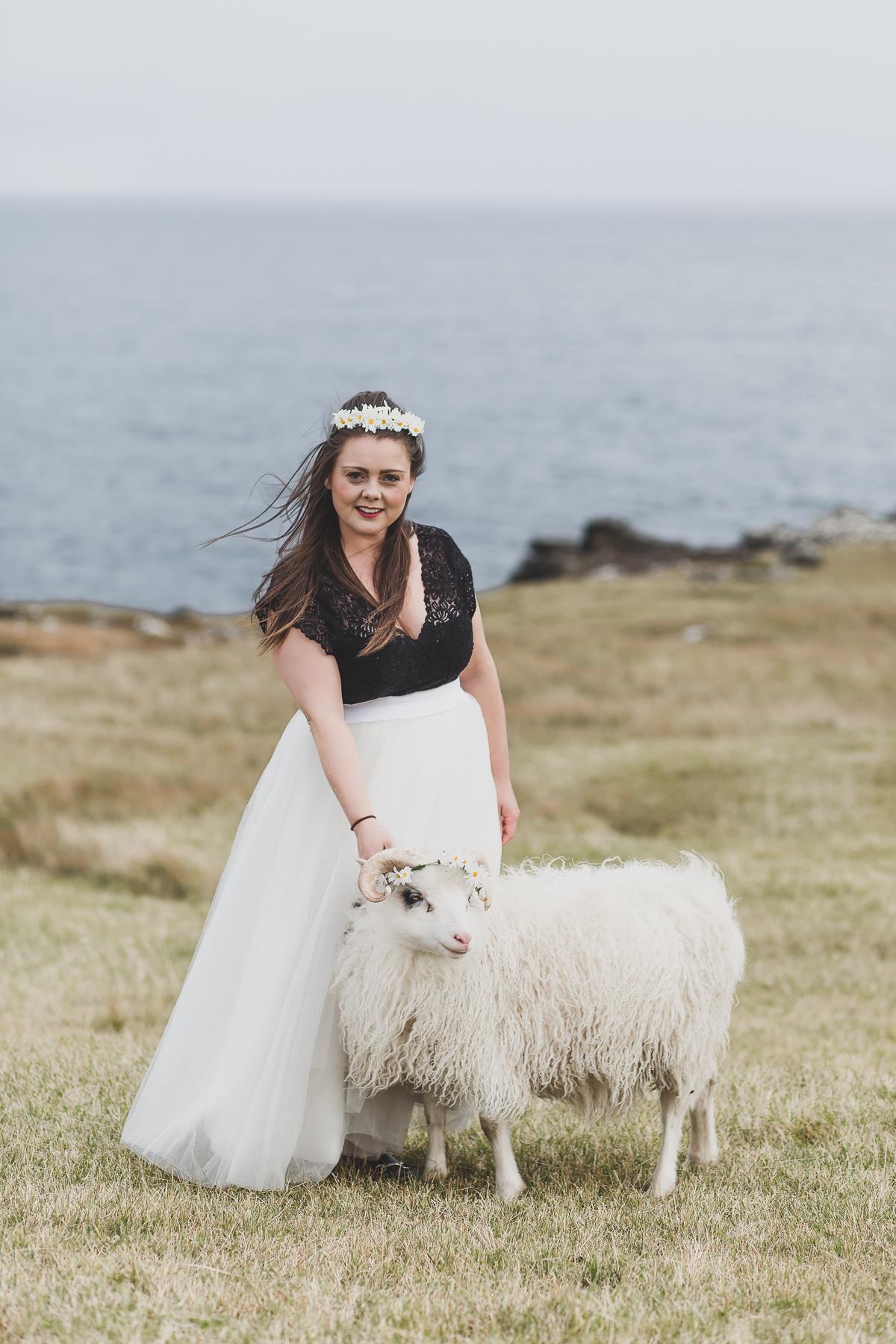 sheepportrait.jpg