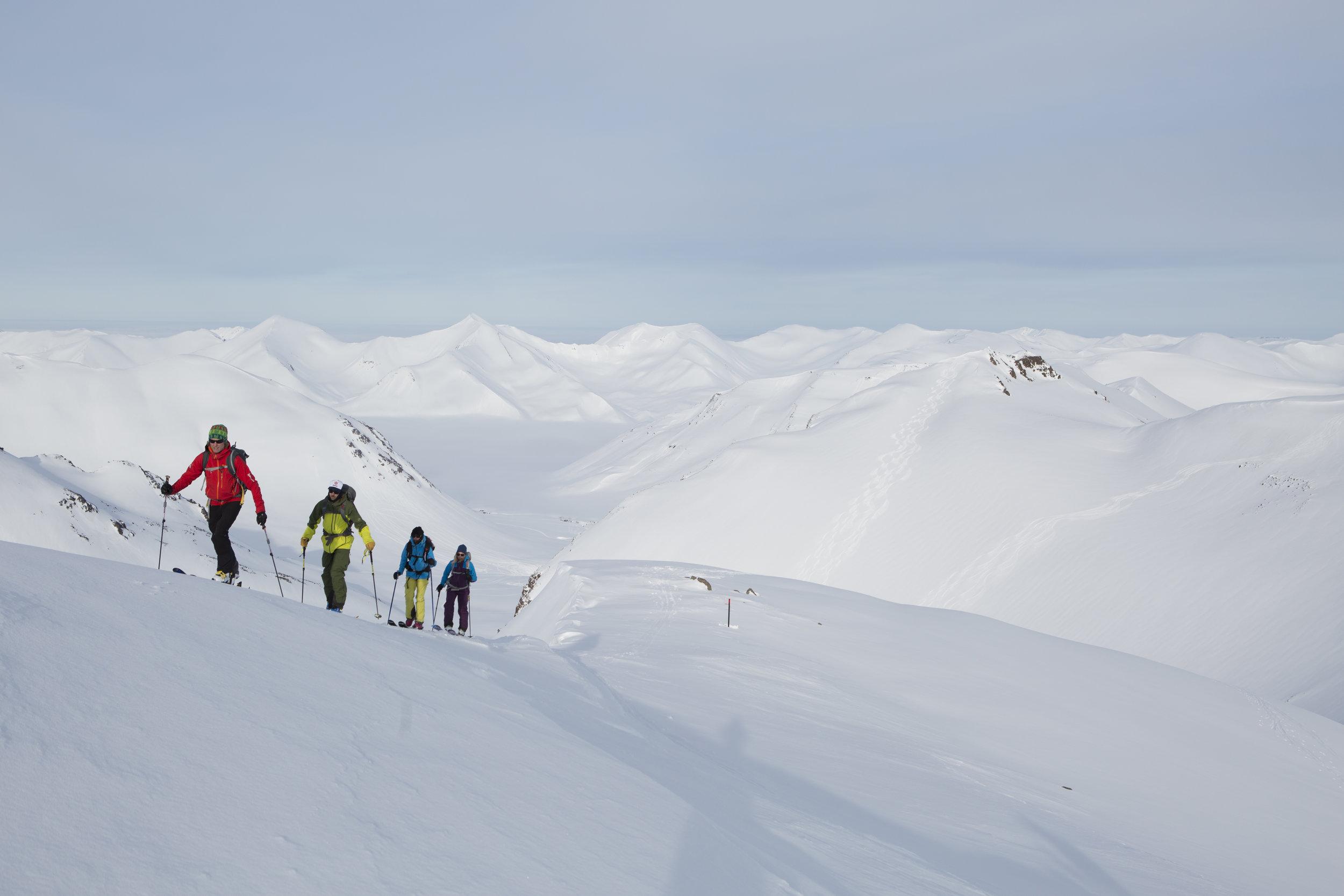 ski-touring-troll-peninsula-iceland-2-©gregvandoersten.jpg