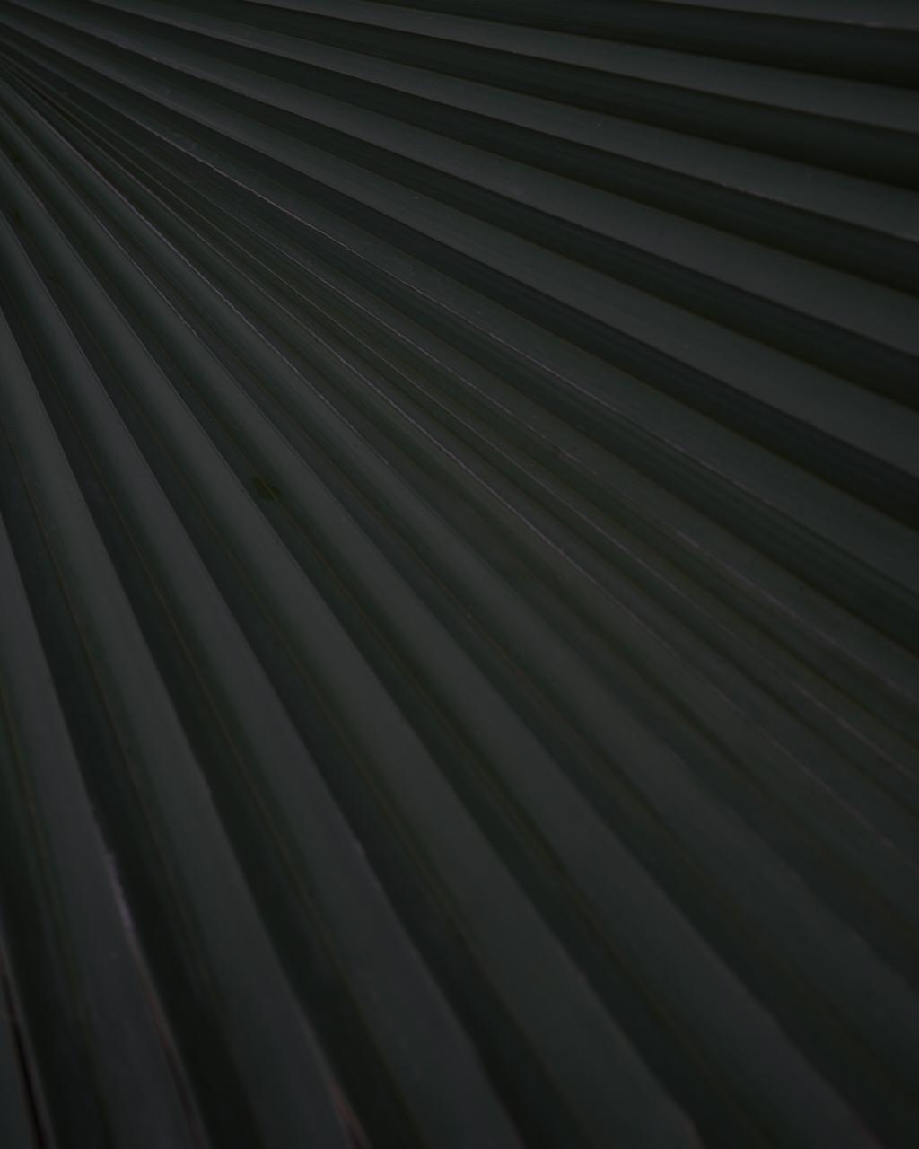 DSC06882 7.jpeg
