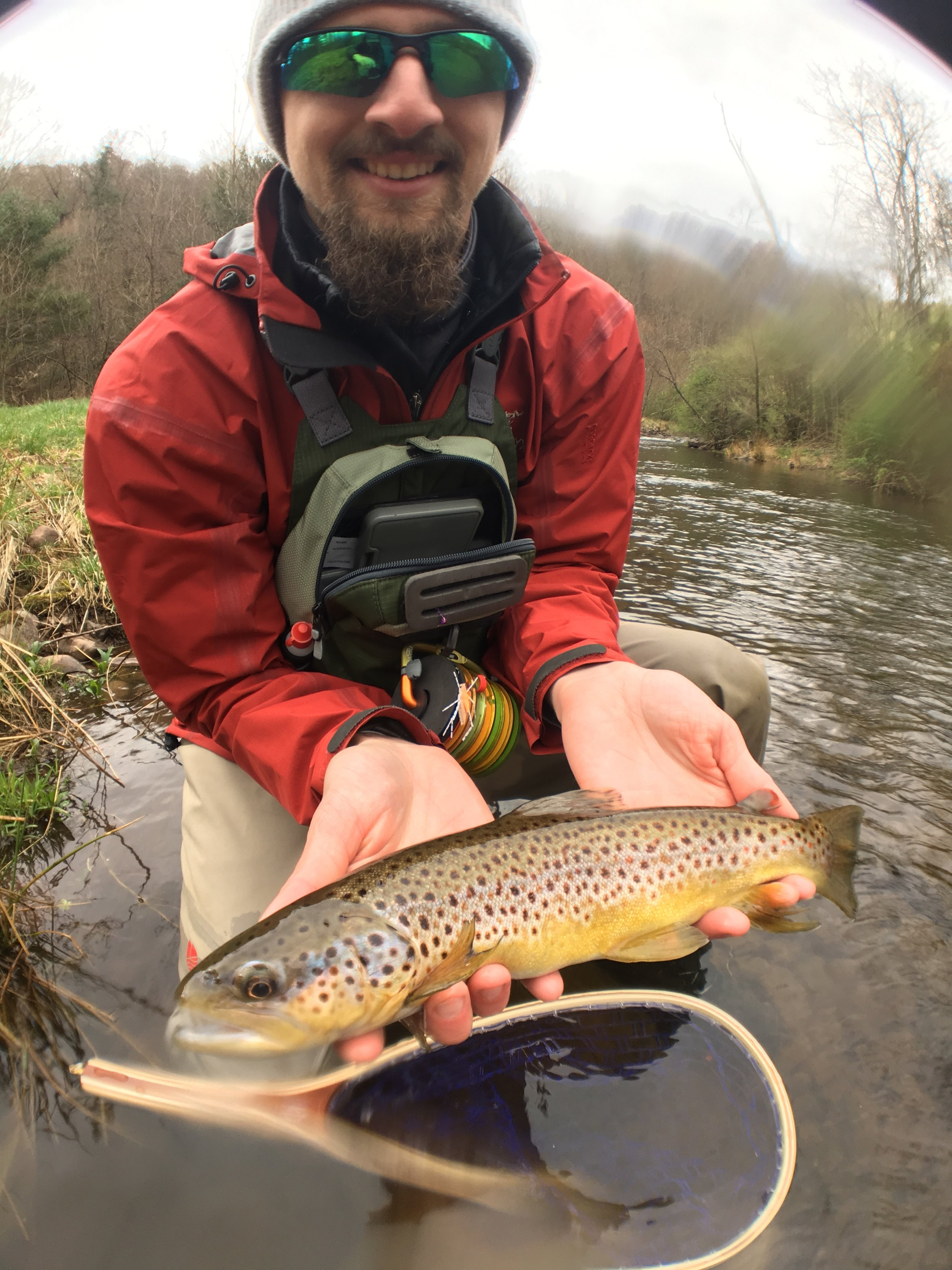 #2 Brownie on a high mountain Brookie stream!?