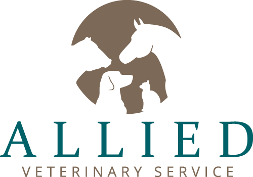 logo | Allied Veterinary Service