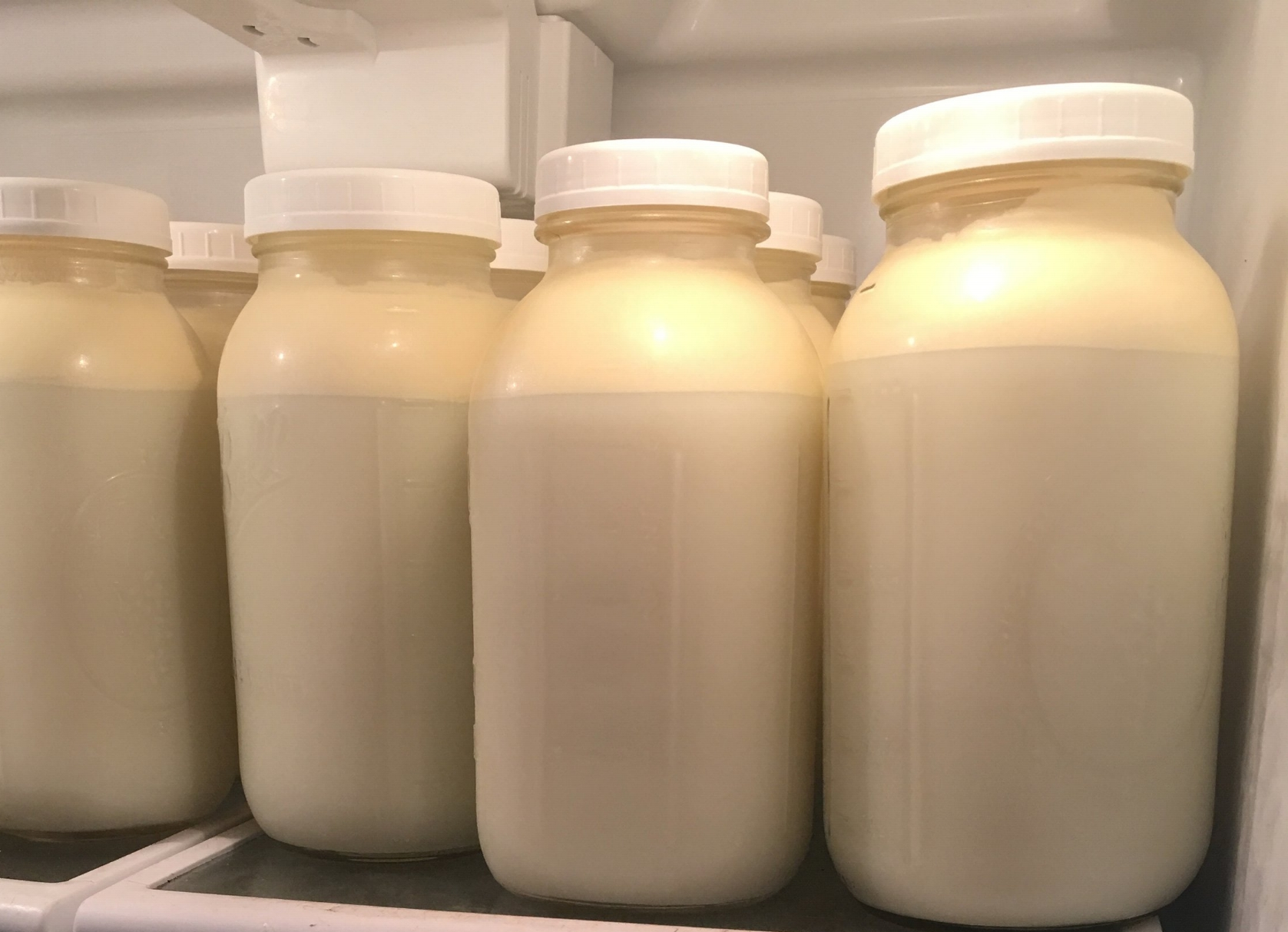 Raw Milk - As part owner of the herd, you can have farm fresh, wholesome, raw milk for your family.