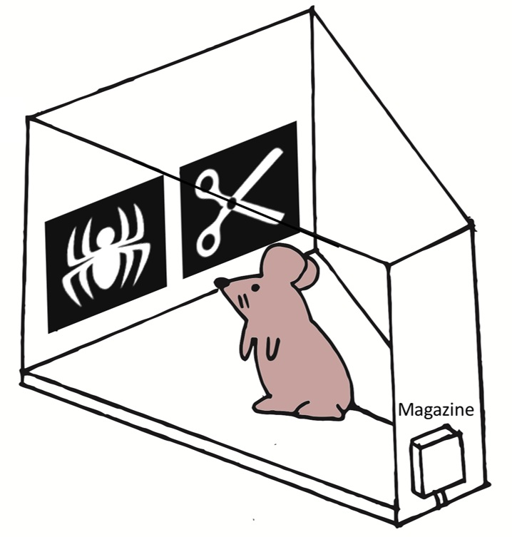 mouse+bandit.jpg
