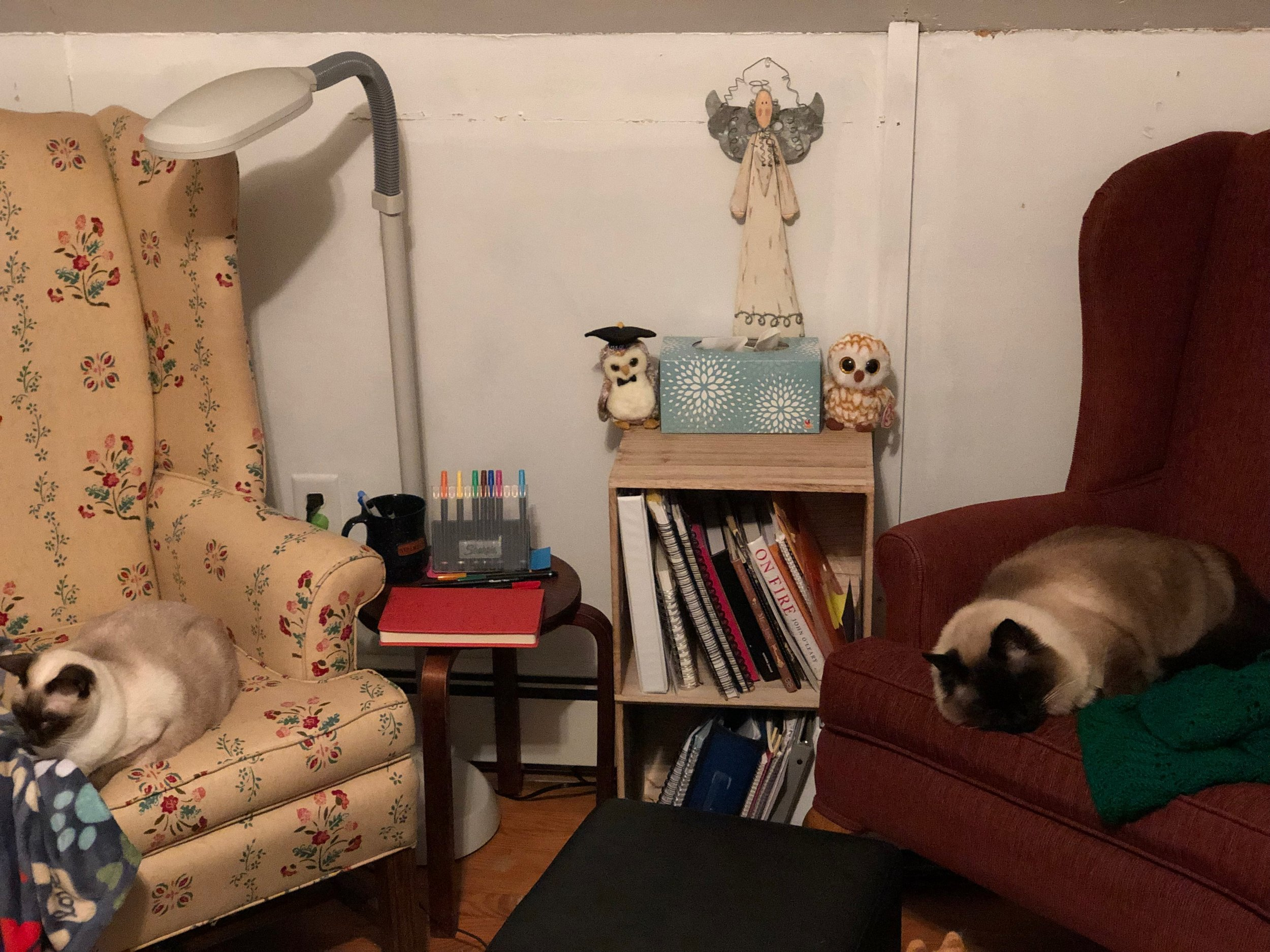 So, that's MY chair on the right, and Jane's on the left...
