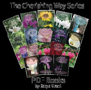 The-Chershing-way-book-300x296.png