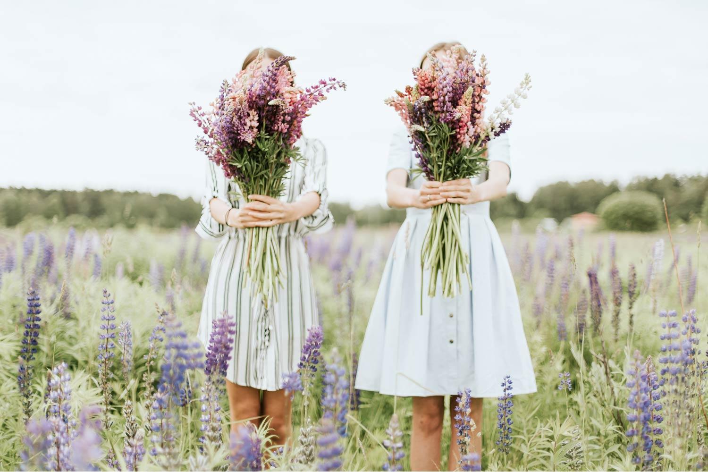 hyacinth-look_feel-02.jpg