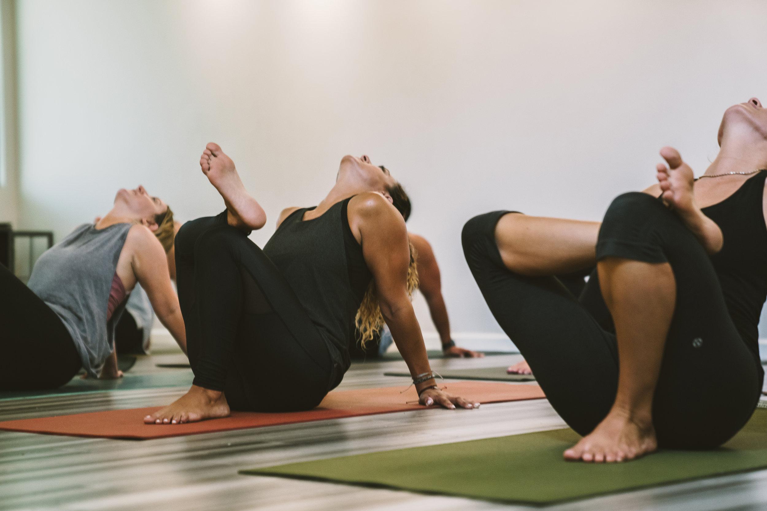 YogaStandardWeb51.jpg