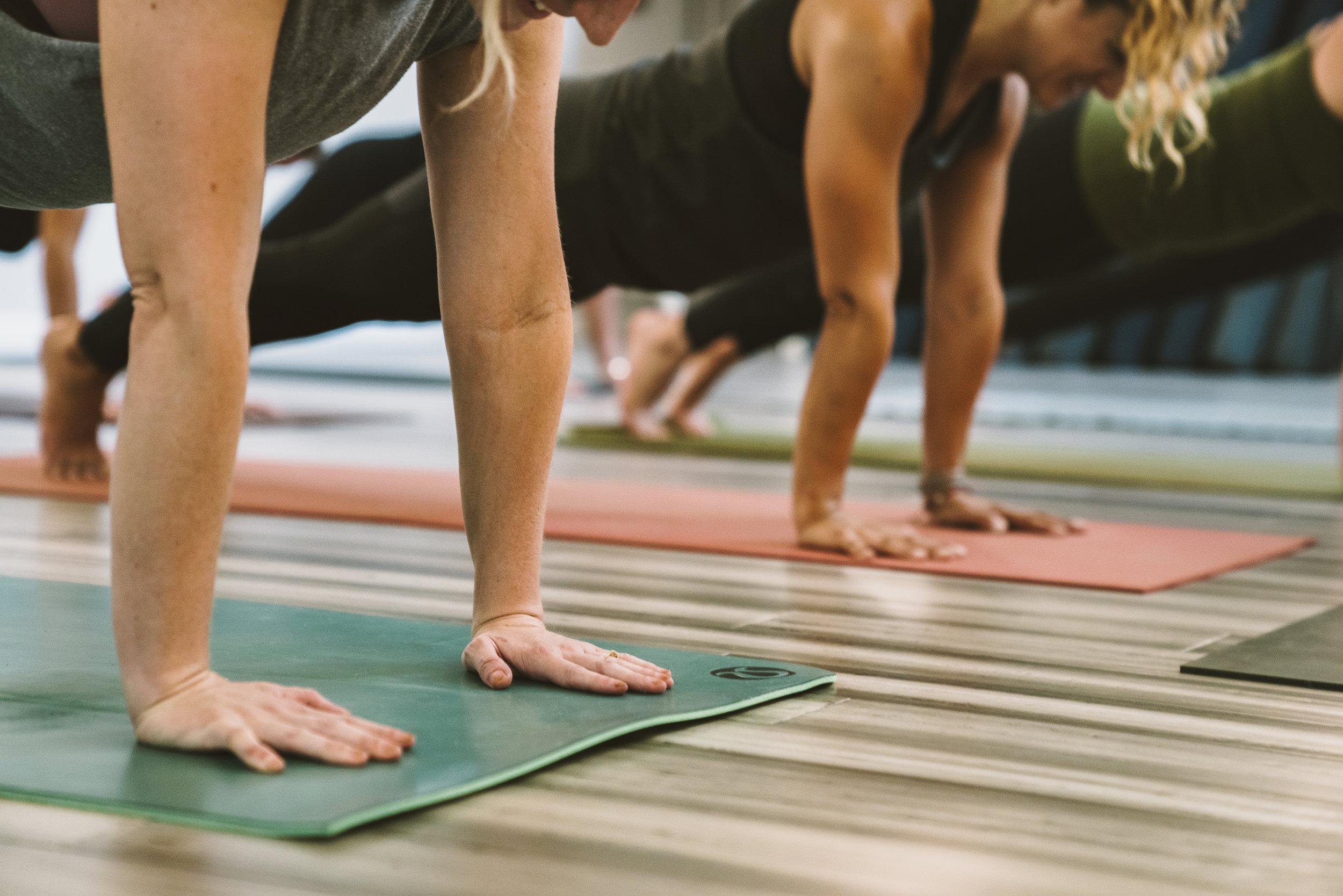 YogaStandardWeb22.jpg
