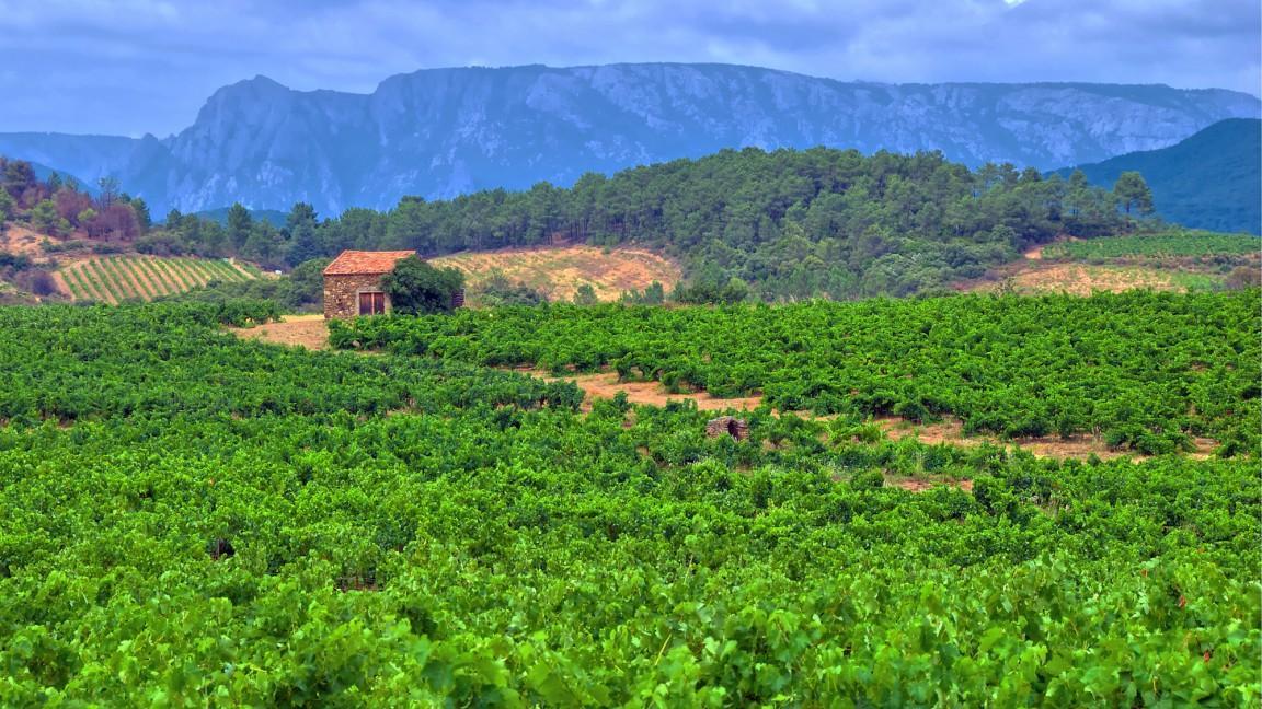 Languedoc.jpg
