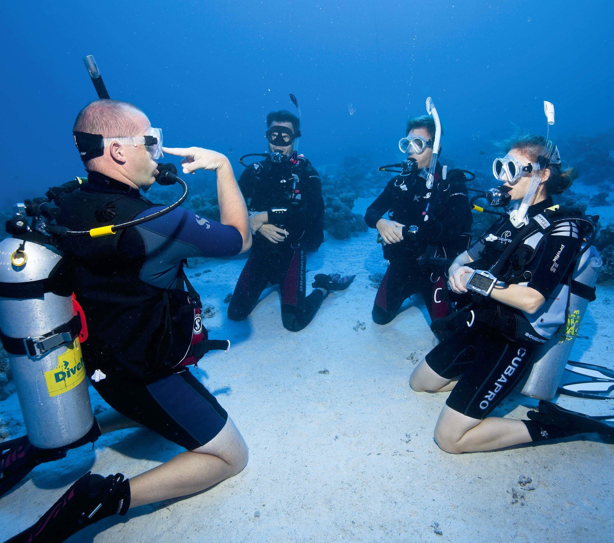 160317-SSI-Diving14(sm).jpg