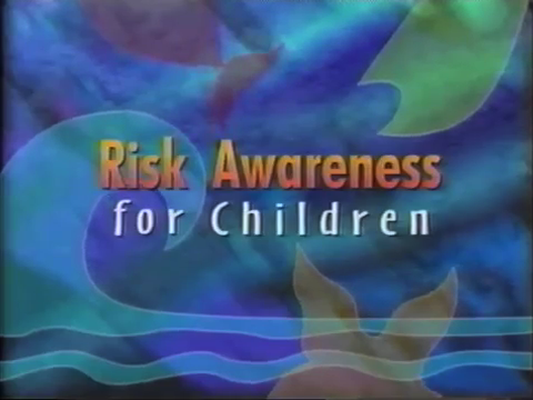 Risk Awareness for Minors