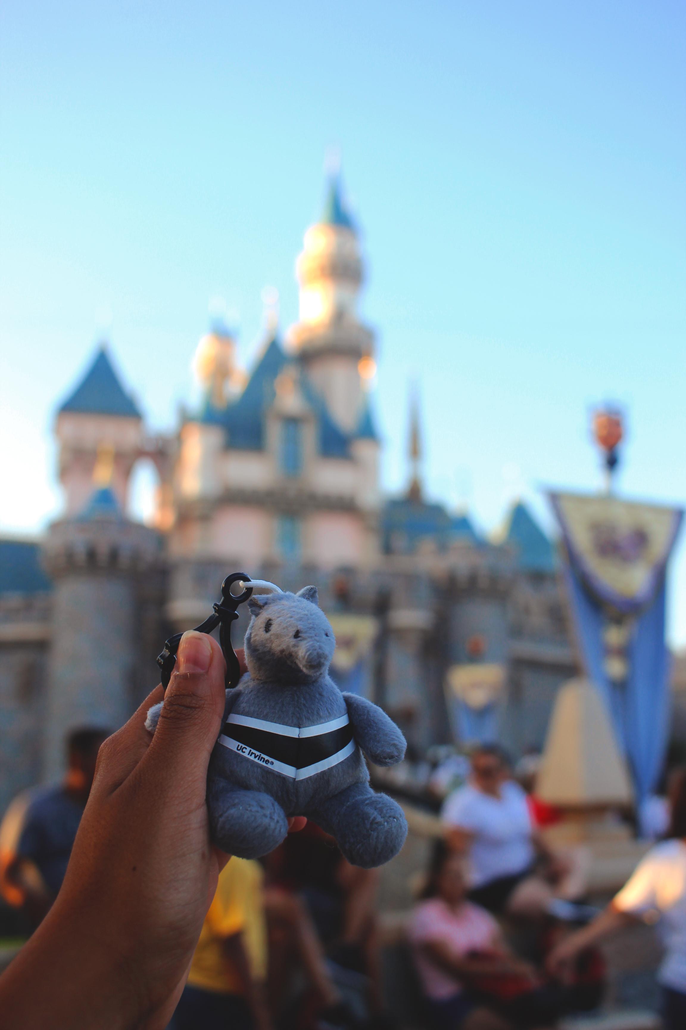 DisneyAnteater.jpg