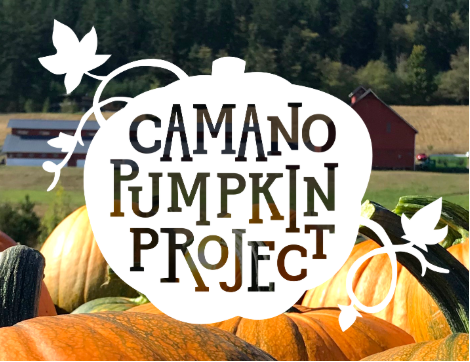 - All proceeds from the event benefit 6 local charities. This festival takes place at the historic Kristoferson Farm on Camano Island, Washington.