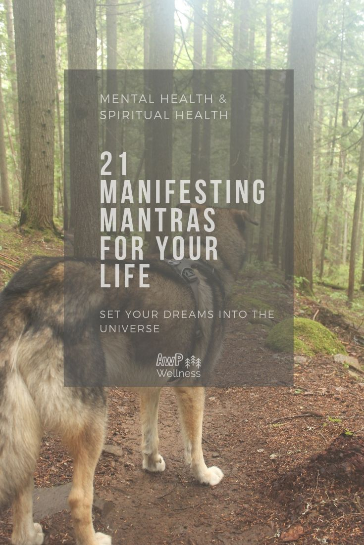 Life mantra into your to attract love 2 Highly