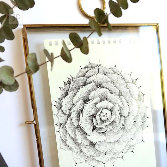 There is always a lot of good excuses to not do the things we really like. It's super scary, there's not time, life happens... ⁣ -⁣ This is the first succulent I drew when I started to draw again. For some reason I stopped drawing when I got into design school. I started my design career but I didn't pick up a pen again until I went freelance. ⁣ -⁣ With work, there was just not enough time. When I came home I was tired and didn't have the energy to put in the effort. I also moved to a different country so there was always something more important or more urgent to do like immigration paperwork or become better at English. Life gets in the way.⁣ -⁣ But, really? Is this what it's about? Being tired and having responsibilities? I think that I would have felt much better then if I had carved out the time to draw even just a little bit. Take Sunday night for example. I am usually just melting on my couch, I could have found 15 or 30 minutes to doodle something and feel better about myself. Also, I would be better at it now.⁣ -⁣ I wish I hadn't wasted that much time not drawing. Practice is the only thing there is to do when we want to become better at something. It's pretty straight forward, there is not much thought to put into it. You just have to do it.⁣ -⁣ Side note👉 I am uploading my original illustrations on my website! I choose to separate myself from them because I am moving away and also because I think that I shouldn't get too attached to what I produce. I have no reason to hold on to them :)⁣ If you want to go check it out, the link is in my bio.⁣ -⁣ -⁣ -⁣ -⁣ -⁣ -⁣ -⁣ #framedart #framedprint #framedprints #printableart #artprints #interiorart #artforthehome #artfoyourhome #emergingartists #artforinteriors  #loveyourhabitat #mystylednest #succulentonly #succulentart #succulentartist #succulentdrawing #plantdrawing #botanicaldrawing #botanicalart #succulentlovers #succuholic #plantillustration #plantdrawing #bohostyle #bohochic #bohoart #bohemianart #drawnbyhand #lifeofanartist #jeannecarlier