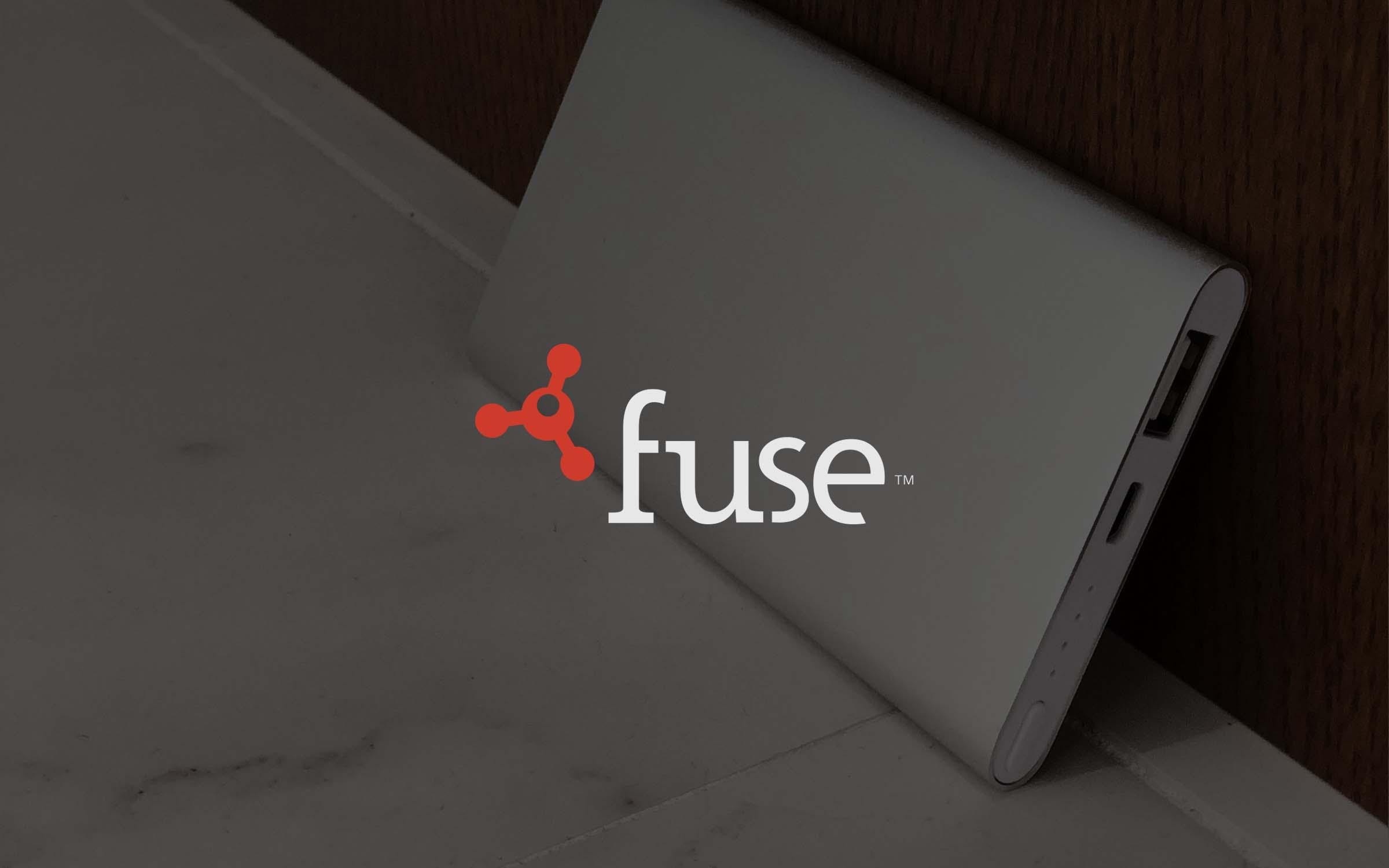 top brand intro blocks_Fuse_02.jpg