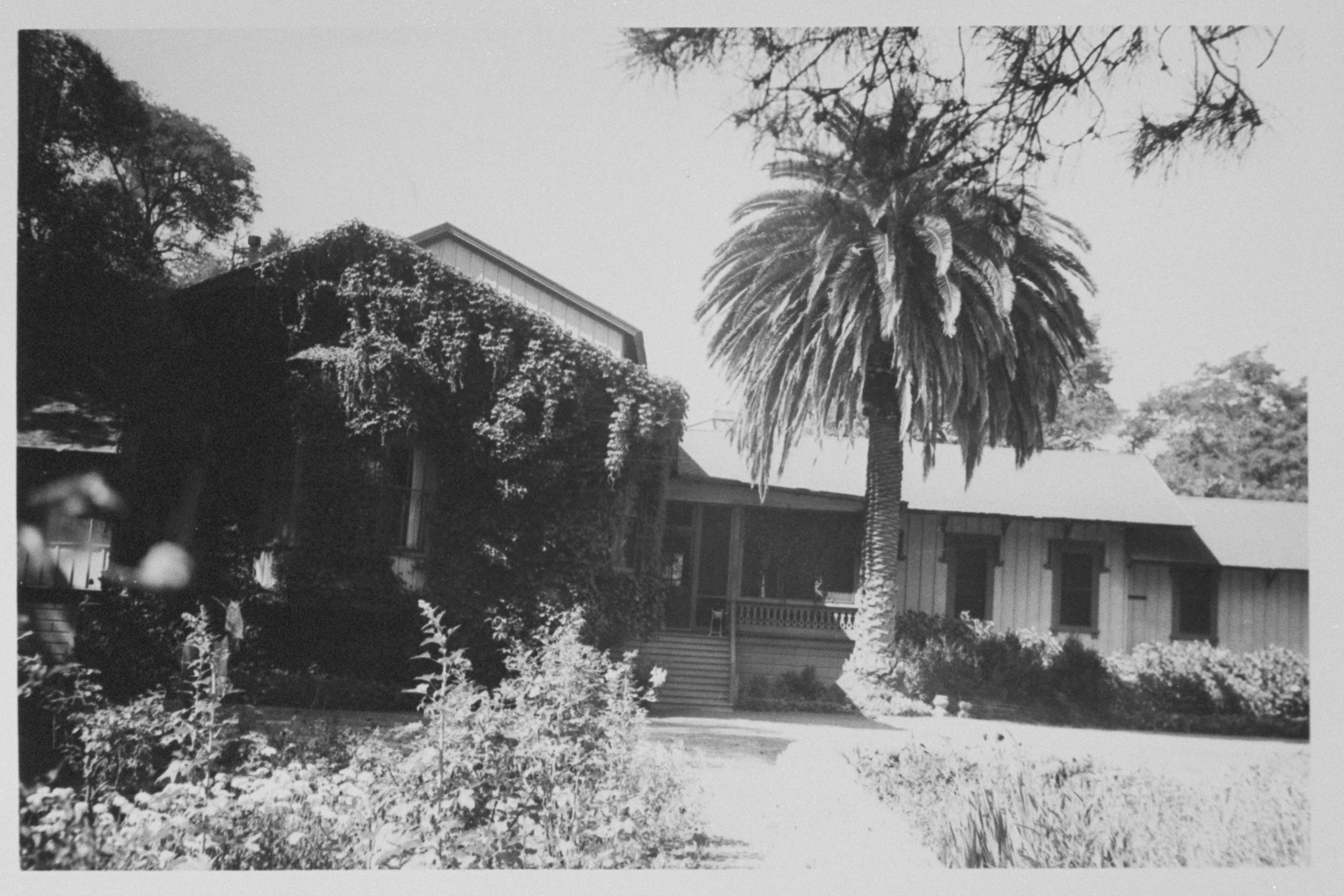 Peter Coutts House