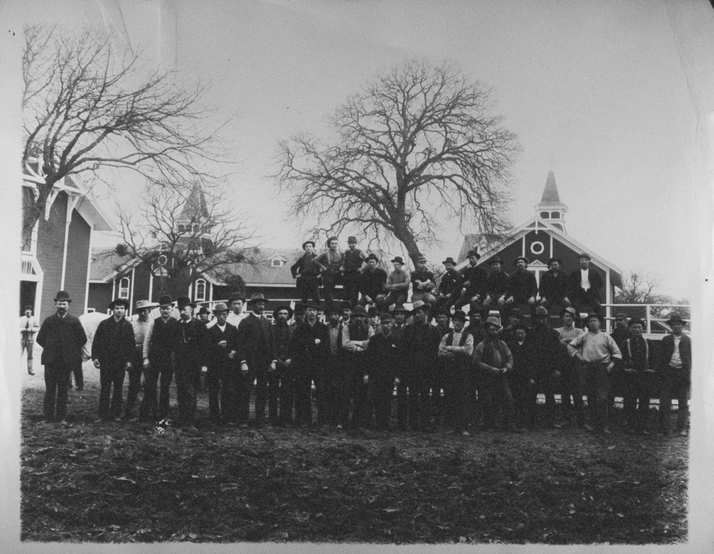 Stanford Stock Farm employees in front of a barn, 1890. Courtesy of PAHA.