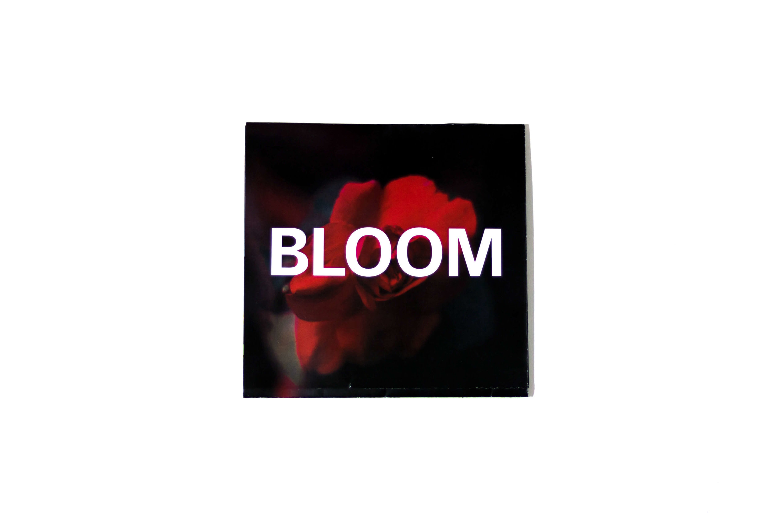 Bloom booklet cover