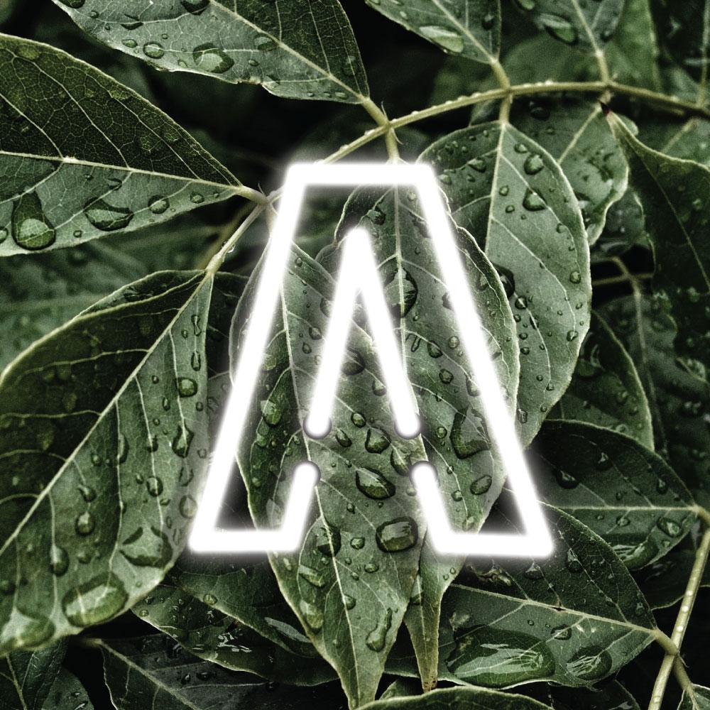 symbol3.jpg