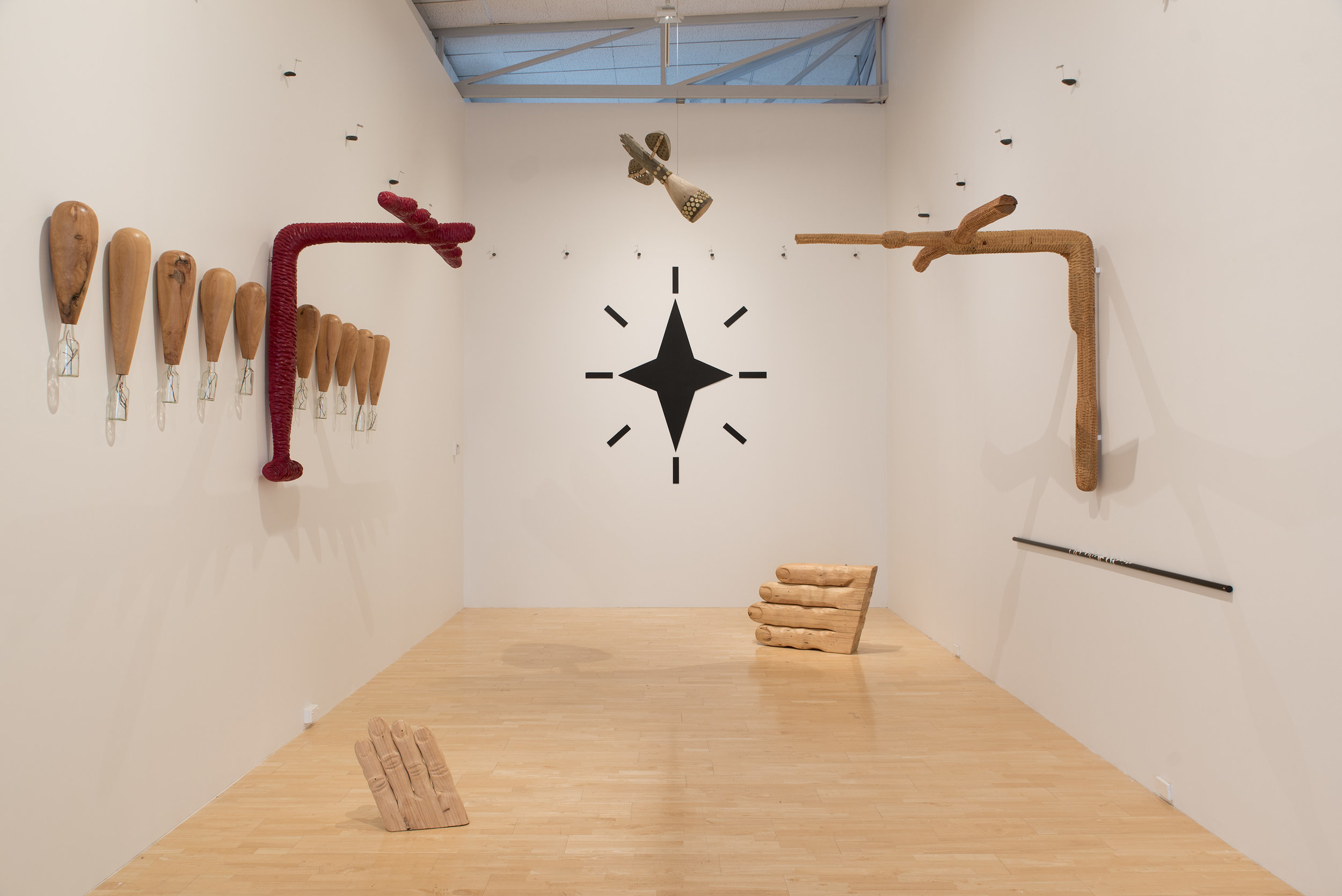 Warren Viscoe: Satellite Skies Don't Tell Lies,  1995 ,  installation view. Collection of The Dowse Art Museum. Photo by John Lake.