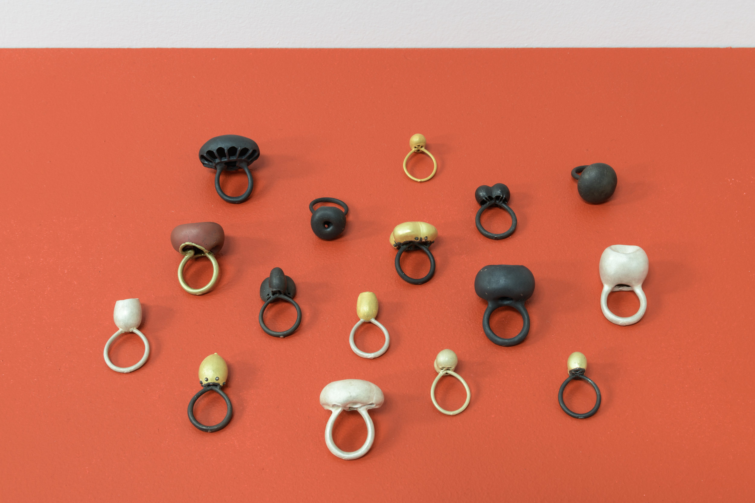 Peter Bauhuis,  Rings , 2018. Image courtesy of The National, Christchurch. Photo by John Collie.