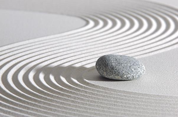 A Zen Rock Garden