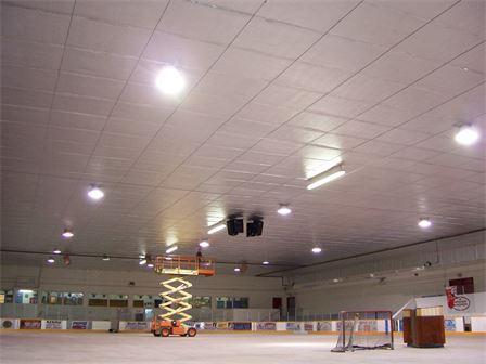 Arena ceiling 2.jpg