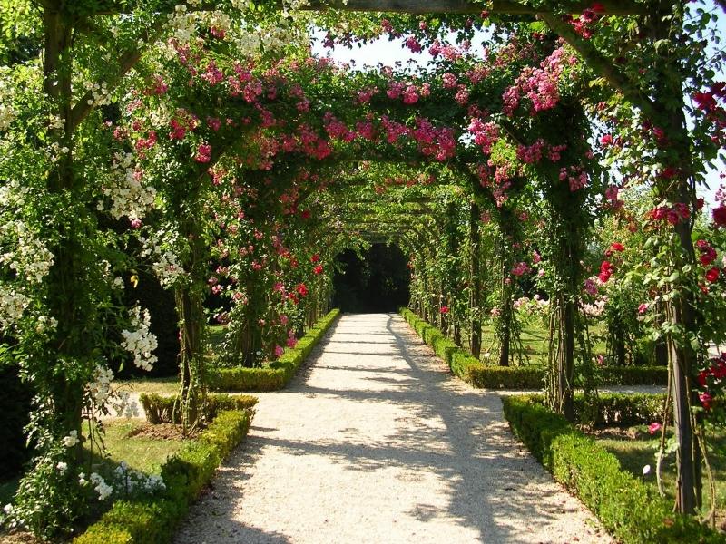 chateau-de-bagatelle-rose-arch-e1506378064835.jpg