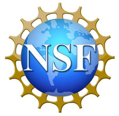 nsf2.JPG